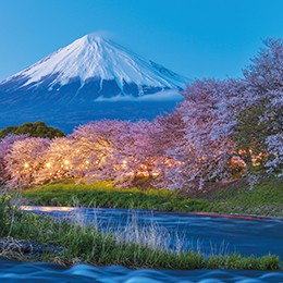 discover-japan1